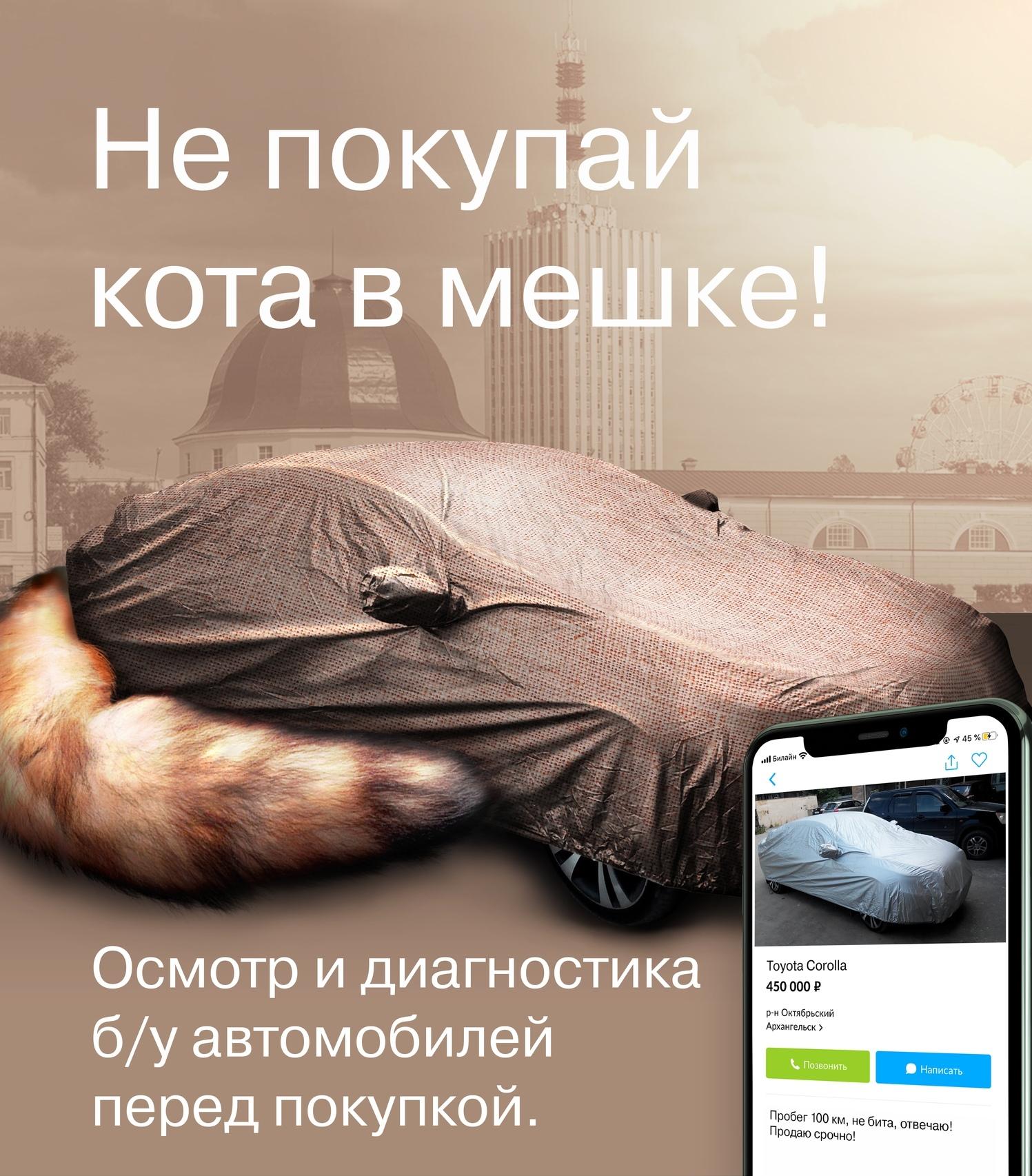 Не покупай кота в мешке!