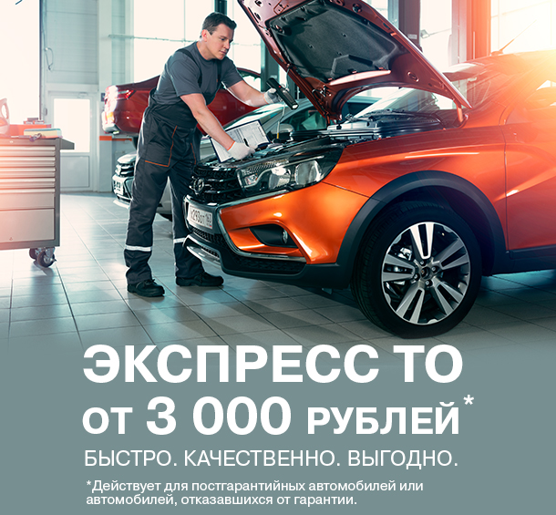 Экспресс ТО за 3000 руб.